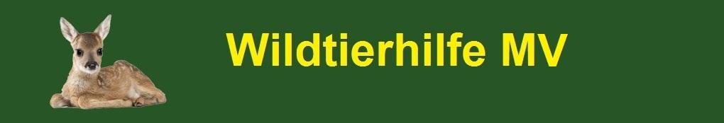 Wildtierhilfe MV - Rehkitzrettung in Mecklenburg-Vorpommern